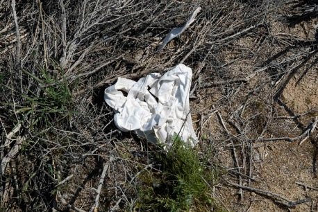 Underwear at Koehn Lake. Do they look familiar? Maybe you forgot them.