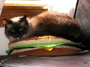 Flippy Burger